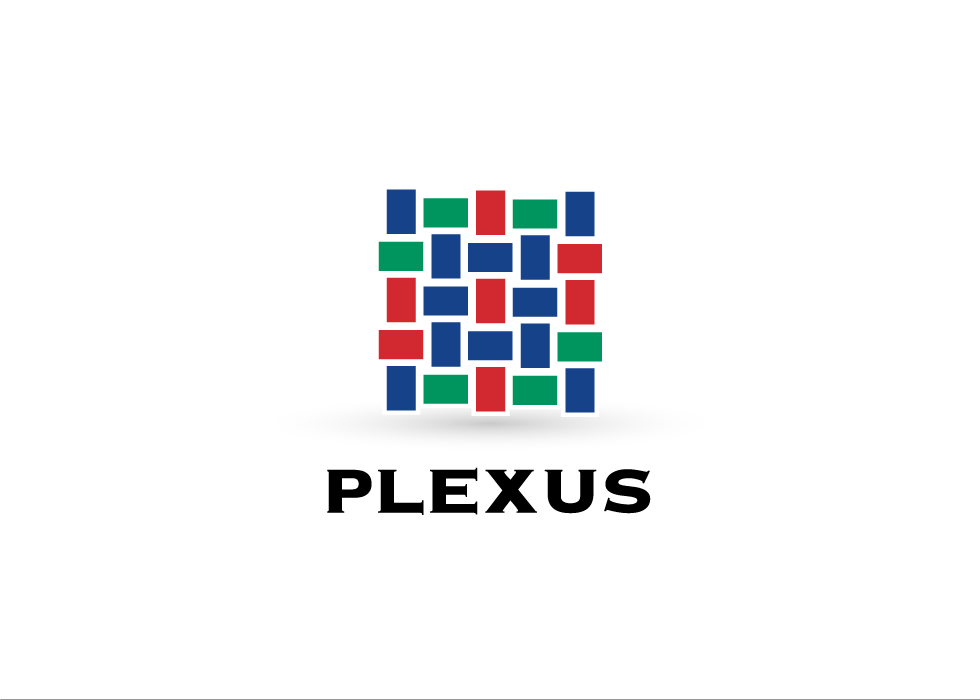 South for Construction | Plexus Logo